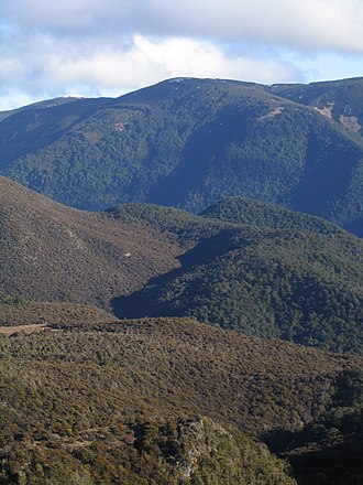Environment of New Zealand - The effect of bedrock on soil and ecology. Ultramafic rock (left) and mafic rock (right).