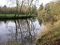 Reflections, River Camowen - geograph.org.uk - 1073557.jpg