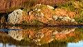 Reflections (29312858763).jpg