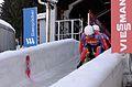 Rennrodelweltcup Altenberg 2015 (Martin Rulsch) 5162.jpg