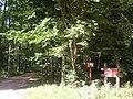 Rezerwat przyrody Krzemianka - panoramio - Maciek67.jpg