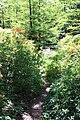 Rhododendronpark Bremen 20090513 063.JPG