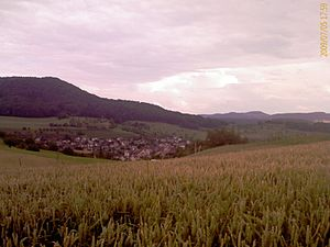 Rickenbach, Basel-Landschaft - Rickenbach