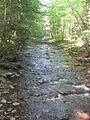 Ricketts Glen State Park Kitchen Creek 1.jpg