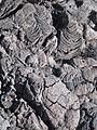 Rippled Dry Lava Flow (2386887888).jpg