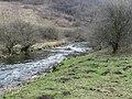 River Wye in Monsal Dale - geograph.org.uk - 1227809.jpg