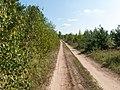 Road - panoramio (170).jpg