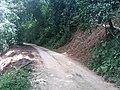 Roadside Landslip in Vazachal Forest, Anaimalai hills Roadside Landslip in Anaimalai hills IMG 20180908 143156957.jpg