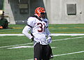 Robert Sands, Bengals training camp 2012.jpg