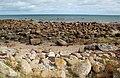 Rocky Coast Near Carnsore Point - geograph.org.uk - 2080585.jpg