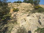 Roman Amphitheatre of Leptis Minor.JPG