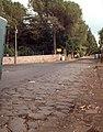 Rome - Old Appian Way (2925966038).jpg
