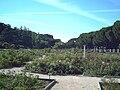 Rosaleda del Parque del Oeste (Madrid) 02.jpg