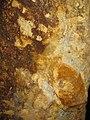 Rosia Montana Roman Gold Mines 2011 - Wall Detail-6.jpg