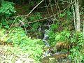 Ruisseau (7).jpg