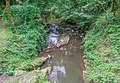 Ruisseau d'Audiernes.jpg