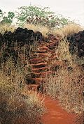 Photograph of ruined stone walls at the Russian Fort, almost overgrown by grasses, with a stone stairway and red earth path.