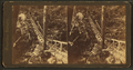 Rustic stairway, Glen Onoko, from Robert N. Dennis collection of stereoscopic views.png