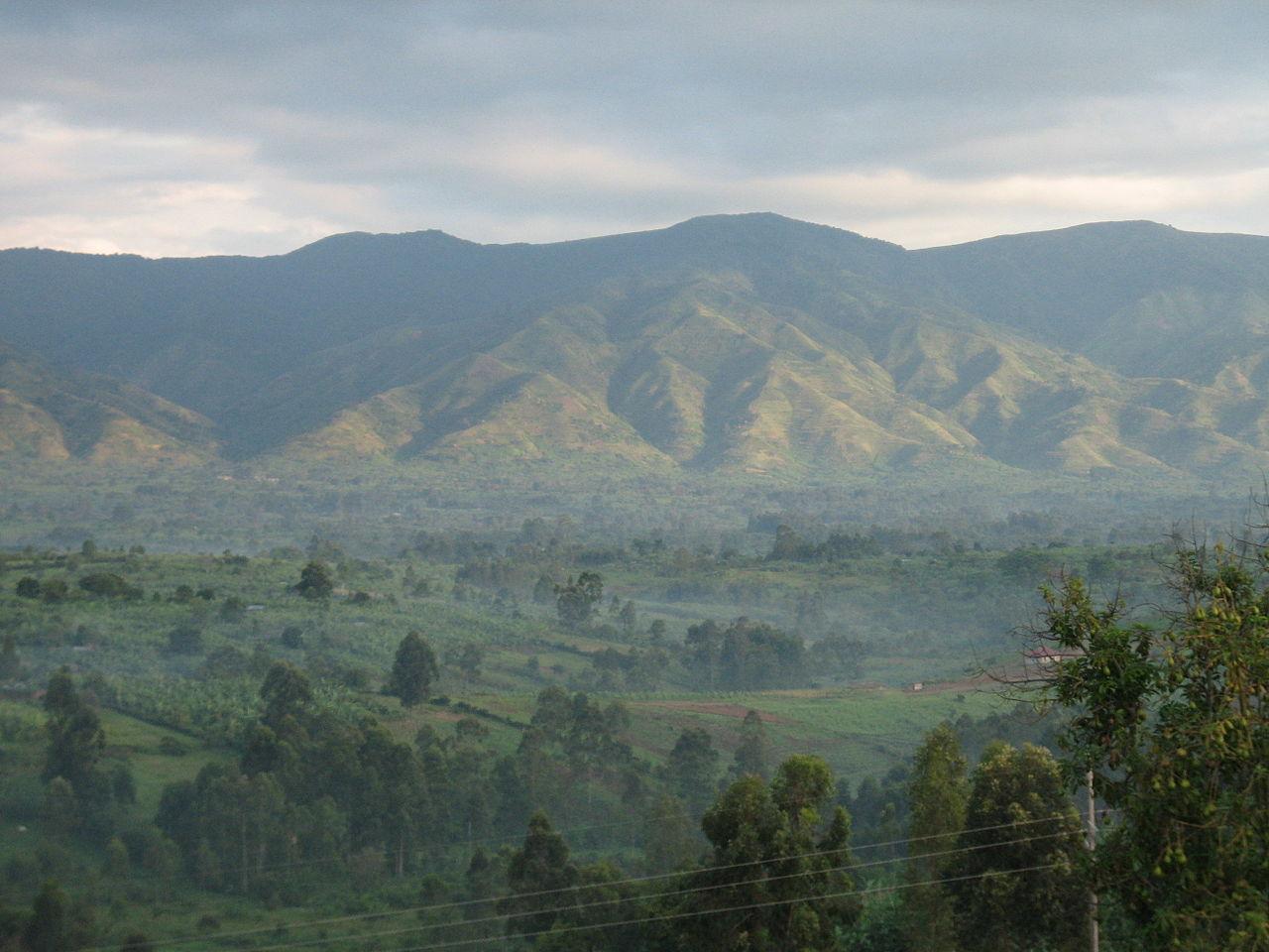 Aree protette ugandesi: il Parco Nazionale Rwenzori Mountains è stato dichiarato Patrimonio Mondiale dell'umanità.
