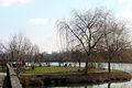 Sótófürdői tó - panoramio - Szemes Elek.jpg