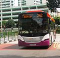 SBS TRANSIT service 242.jpg