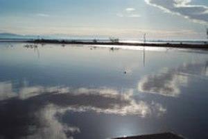 Sonny Bono Salton Sea National Wildlife Refuge - Image: Saltonsea at sonny bono salton sea nwr