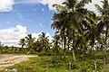 Samaná Province, Dominican Republic - panoramio (161).jpg