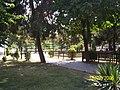 Samsun - panoramio - Öner Akgün.jpg