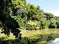 San Juan Botanical Garden - DSC07044.JPG