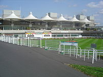 The parade ring at Sandown Park