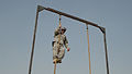 Sappers climb to new heights DVIDS463455.jpg