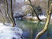 Photo de la Saulx (rivière) en hiver.