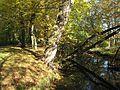 Schlosspark Buckow (Märkische Schweiz) 04.jpg