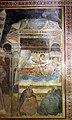 Scuola bolognese (forse lippo di dalmasio), storie di san francesco, ante 1343, 06 sogno di innocenzo III, 2.jpg