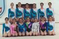 Selección nacional de gimnasia rítmica de España 1991.png