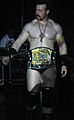 Sheamus WWE Champ.jpg