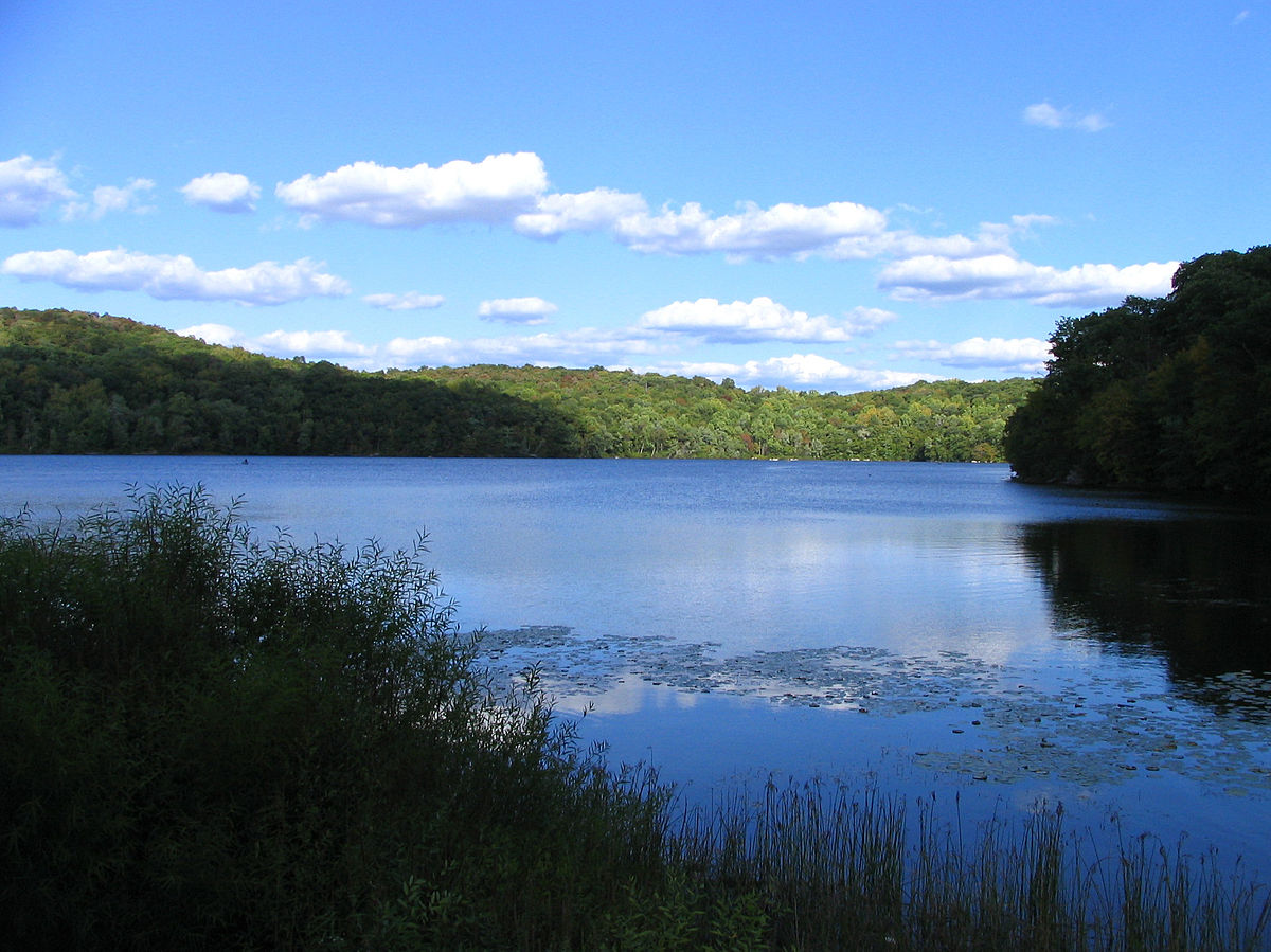 Ringwood State Park Wikipedia