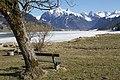 Sihl Lake - panoramio (24).jpg