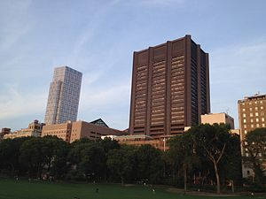 Icahn School of Medicine at Mount Sinai - Icahn School of Medicine from Central Park
