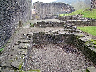 Foundations of the hall range Skenfrith Castlec - geograph.org.uk - 1491070.jpg