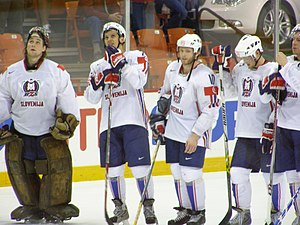 Slovenia men's national ice hockey team - Slovenian players at the 2008 World Championship, where they finished fifteenth.