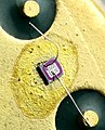 Small Signal Switching Transistor Die.jpg
