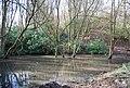 Small woodland pond near Three Chimneys - geograph.org.uk - 1766808.jpg