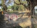 Smashan Kali Shrine - Smashan Kalitala - Baduria - North 24 Parganas 2012-02-24 2450.JPG