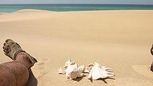 Somalia-Talous-Somaliland (6936771853) (2)