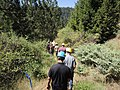 South Fork Amercian River Cohesive Strategy Field Trip (36013612045).jpg