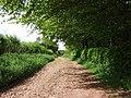 Spangate Lane - geograph.org.uk - 177410.jpg
