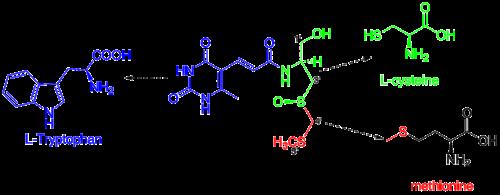 Sparsomycin retro.png