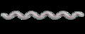 Spirochaeta diagram.png