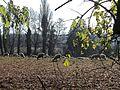 St-Prex-Lausanne-Ouchy (12.12.12) 69 (8270440548).jpg